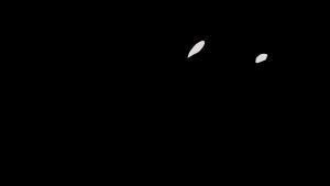 LogoLP